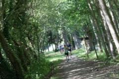 Bedee_nature_5km-88